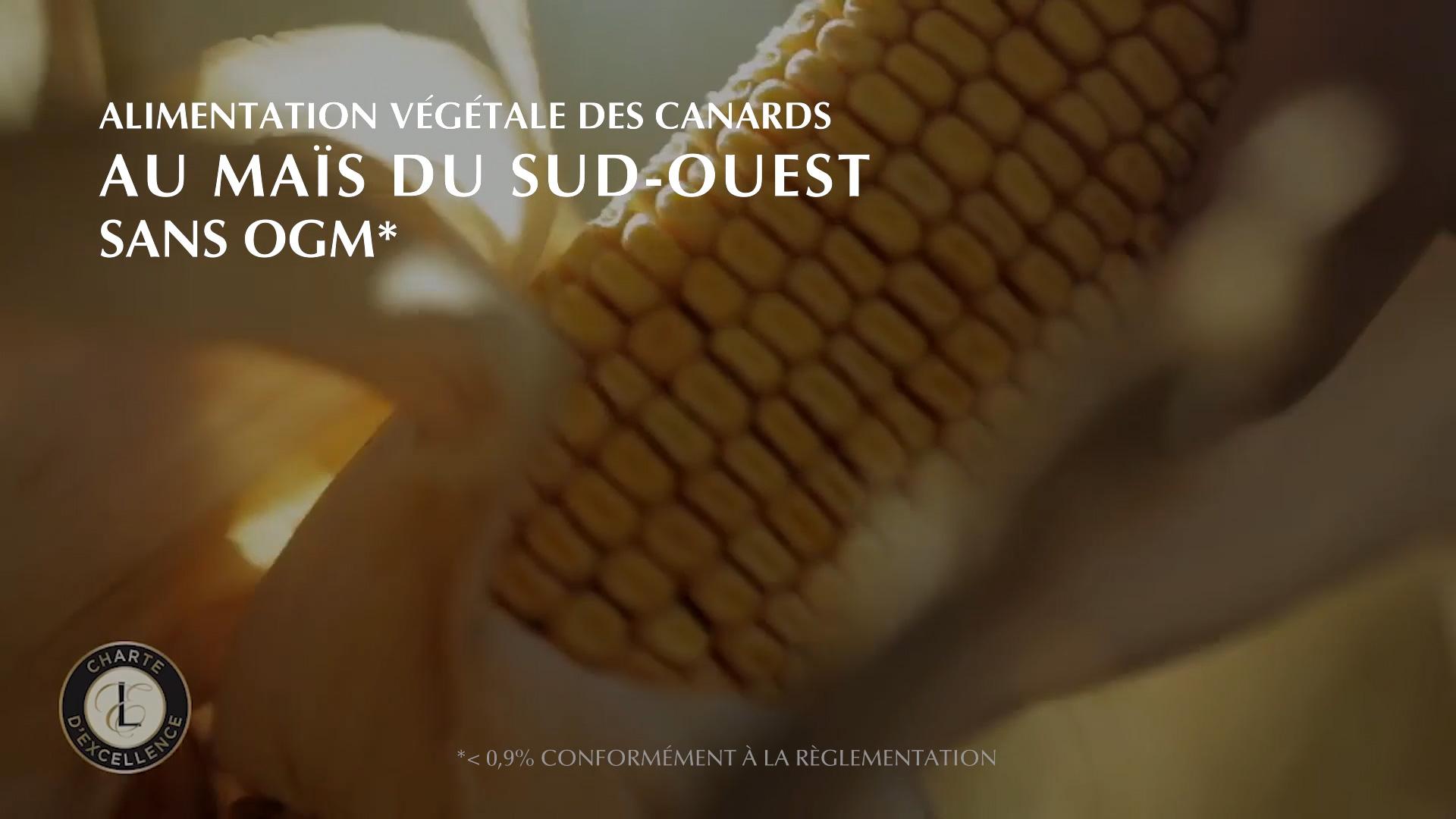 Vidéo RSE agro-alimentaire